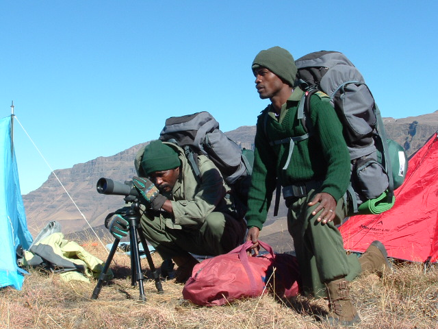 Field Rangers and Scope