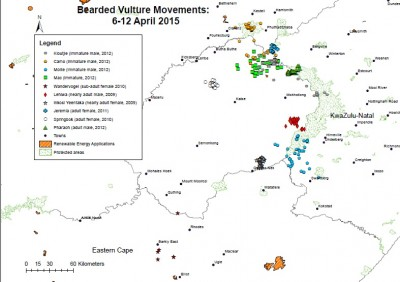 2015-04-06-12-south-africa-bearded-vulture-satellite-tracking-map